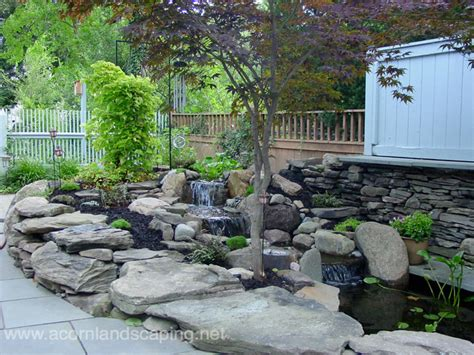 garden rochester ny garden ponds fish ponds koi ponds county