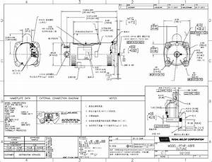 century 1081 pool pump duty wiring diagram dogboiinfo With pool motor wiring