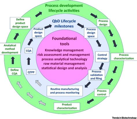 quality  design qbd based process development