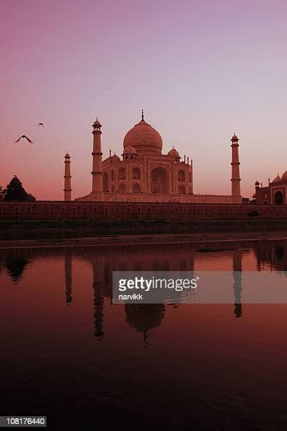 taj mahal  night   premium high res pictures