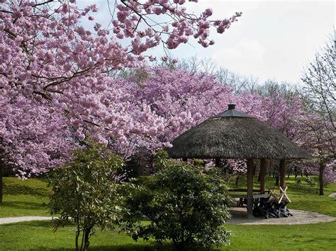 Japanischer Garten Hasselt Belgien by Limburg Und Hasselt 03 05 2018 06 05 2018 Felix Reisen