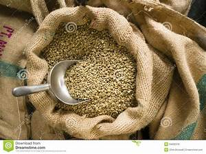 Raw Coffee Seeds Bulk Scoop Burlap Bag Agriculture Bean ...