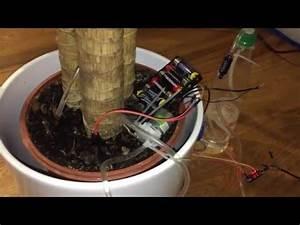 Pflanzen Automatisch Bewässern : pflanzen und blumen automatisch bew ssern automatic plant watering system arduino youtube ~ Frokenaadalensverden.com Haus und Dekorationen