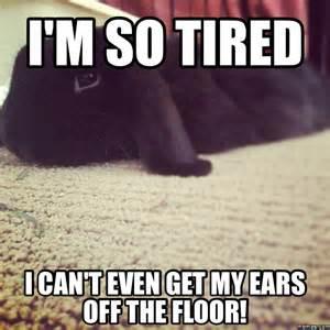I AM so Tired Meme