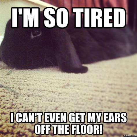 I M So Tired Meme - i m so tired i can t even get my ears off the floor memes com