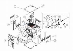 Hayward H-series Low Nox - Idl2 Parts