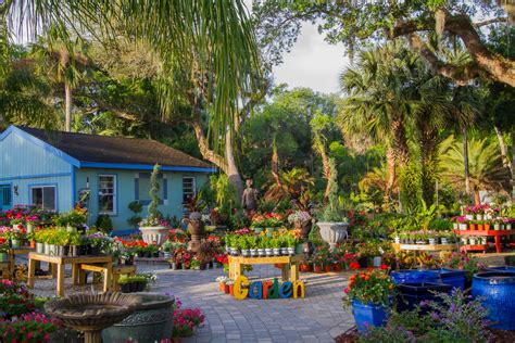 palm gardens fl palm coast florida garden center hammock gardens