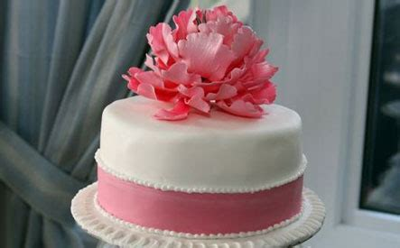 hour cake decorating class including