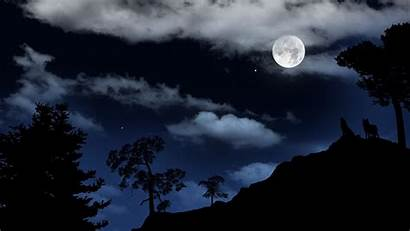 Wolf Howling Moon Cool Viewing