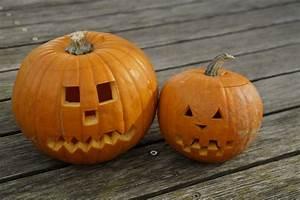 Visage Citrouille Halloween : images gratuites d coration orange l gume l 39 automne halloween craser gourde action de ~ Nature-et-papiers.com Idées de Décoration