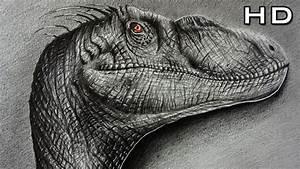Dibujando un Velociraptor Estilo Realista a lápiz Versión Rápida YouTube