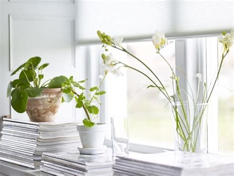 Deko Für Fensterbänke  Die Schönsten Ideen Für Sie