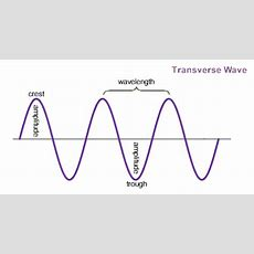 Properties Of Waves  8th Grade Science