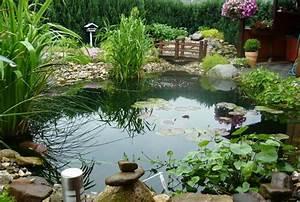 Kleine Gartenteiche Beispiele : wundersch ner gartenteich mit fischen ~ Whattoseeinmadrid.com Haus und Dekorationen