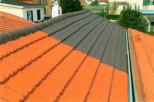 Peinture Pour Toiture : peinture de toiture devis toiture zinc guehenno online ~ Melissatoandfro.com Idées de Décoration