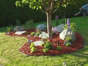 Kleiner Baum Garten : moderner steingarten ein kleiner baum garten pinterest ~ Lizthompson.info Haus und Dekorationen