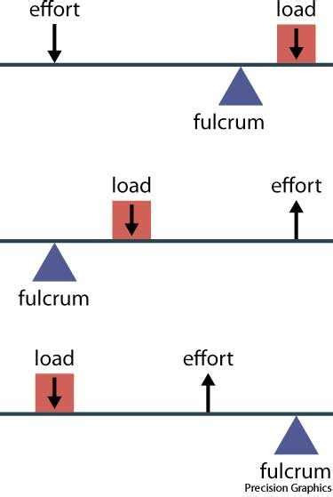 Fulcrum Dictionary Definition Fulcrum Defined