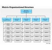 0514 Matrix Organizational Structure Powerpoint