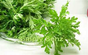 Simply Senz  Beauty Herbs For Women