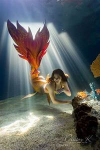 Mermaid River With Wands And Wishes Mermaids  Tail By