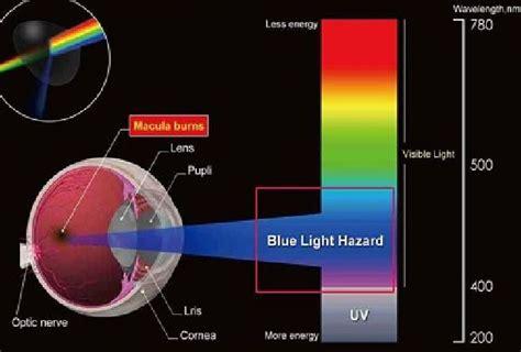 blue light filter for laptop glasses archgon anti blue light gl end 5 18 2016 1 15 pm