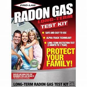PRO-LAB Long Term Radon Gas Test Kit-RL116 - The Home Depot