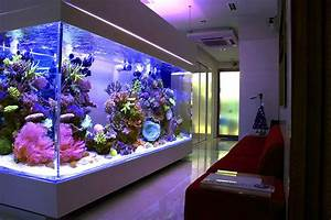 Top Ten Aquariums Of All Time  Nominate Now