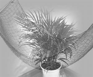 Palme Schwarz Weiß : welcome to the jungle palmen schwarz wei fotografie digitale kunst von abstracta bei kunstnet ~ Eleganceandgraceweddings.com Haus und Dekorationen
