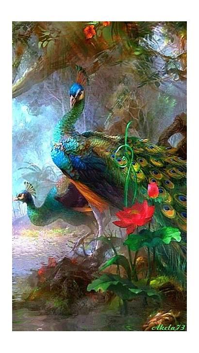 Peacock Artistic Bird Peacocks Pavo Painting Shower