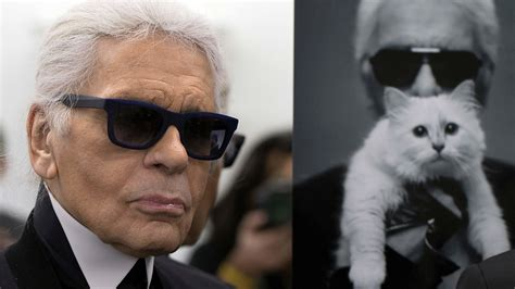 choupette karl lagerfelds cat   million reasons