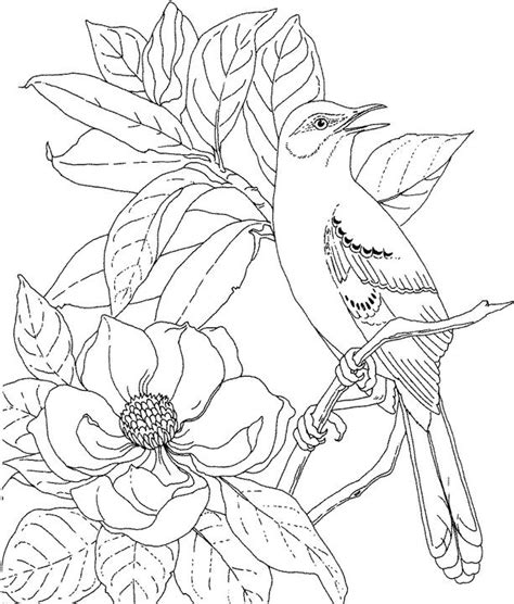Mississippi Mockingbird Coloring Page Purple Kitty