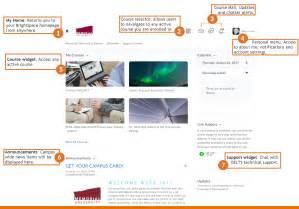 Navigating The Brightspace Homepage