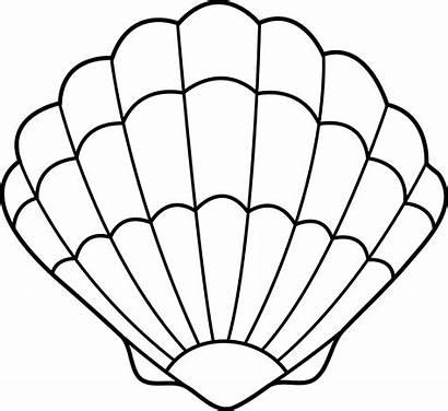 Seashell Clipart Clip Shell Sea Outline Printable