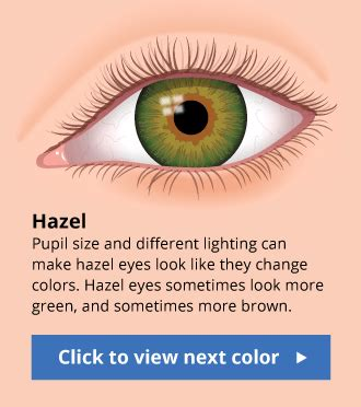 what color is hazel human eye color chart with facts