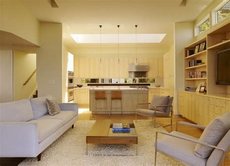 Living Rooms With Skylights