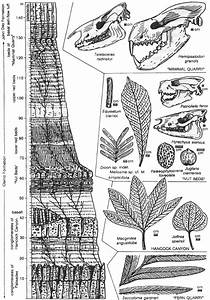 John Day Fossil Beds Nm  Geology And Paleoenvironments Of