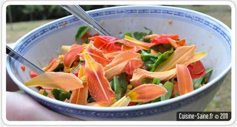 recettes cuisine minceur recette bio minceur salade composée à l hémérocalle et coquelicot cuisine saine sans