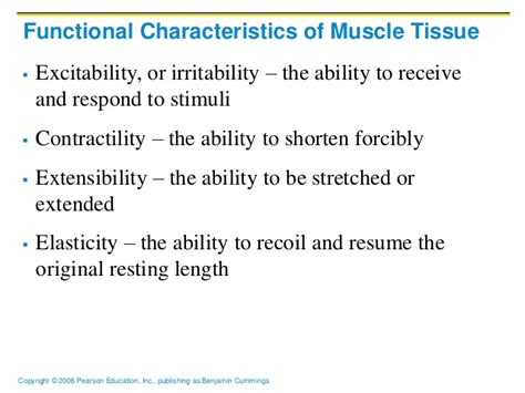 5 Characteristics Of A Resume by Ch09 A Muscles Tissue