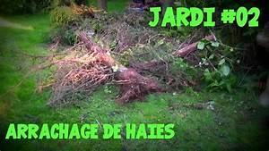 Quand Tailler Une Haie : jardi 02 arrachage de haies youtube ~ Melissatoandfro.com Idées de Décoration