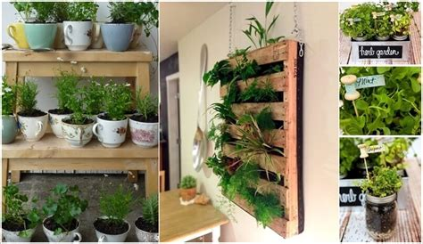 Herb Garden Indoor : Cool Diy Ideas To Grow An Indoor Herb Garden