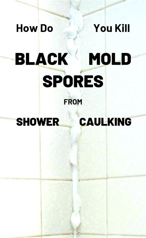 Kill Black Mold In Shower by How Do You Kill Black Mold Spores From Shower Caulking