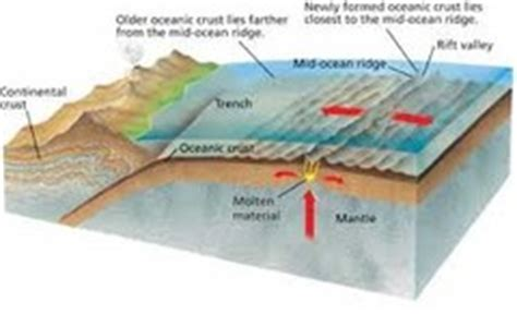 describe the process of seafloor spreading quizlet 1 4 sea floor spreading flashcards quizlet