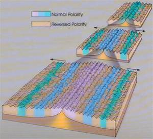 Magnetic stripes on the ocean floor carpet review for How did scientists determine the age of the ocean floor