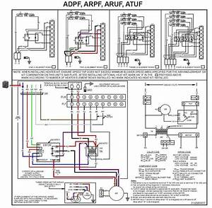 Wiring Diagram Rx King Pdf
