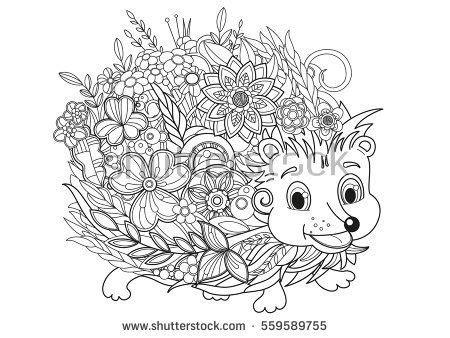 hedgehog doodleblack  white drawing  coloring