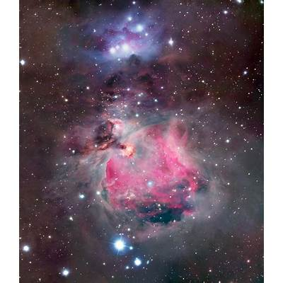 The Orion Nebula at different wavelengths