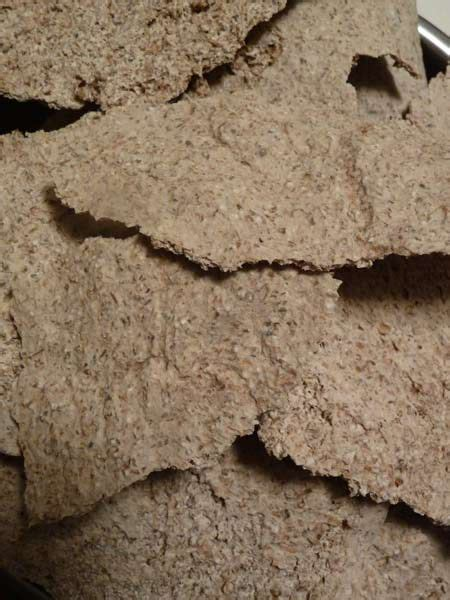 Sprouted Grain Crackers