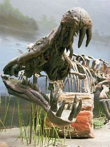 17 Best images about Deinosuchus (Cretaceous) on Pinterest ...
