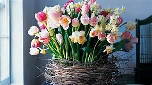 Blumen Im Frühling : blumen arrangements im fr hling 50 ideen als anregung ~ Orissabook.com Haus und Dekorationen