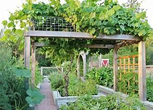 Chic Grape Arbor Method Seattle Farmhouse Landscape